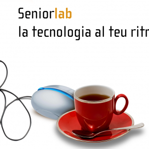 Seniorlab: An Innovative, User-driven Lifelong Learning Project